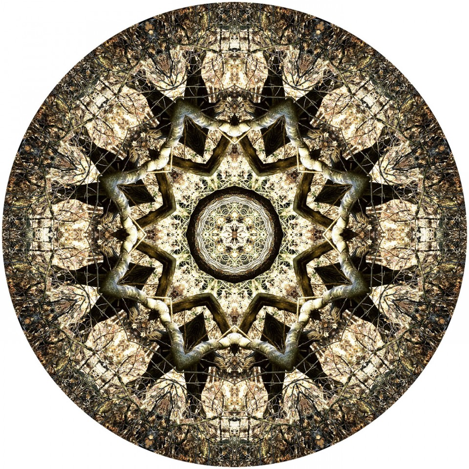 Photographic Mandalas